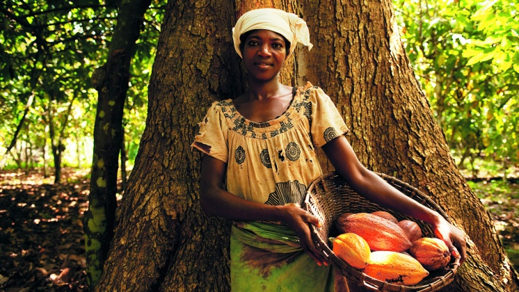 Nestlé makes progress on empowering women in cocoa supply chain