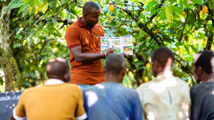 Nestlé Ghana commits to a sustainable cocoa supply chain through the Nestlé Cocoa Plan